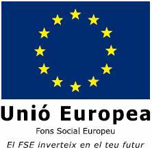 FSE_2007_v_va Europa